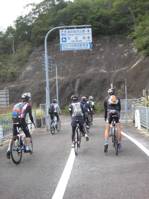 自転車道 加古川 自転車道 : 自転車道には時よりドングリや ...