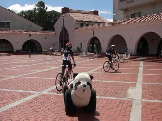 サイクルスポーツでは、自転車 ...