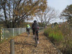 自転車道神出山田 041