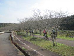 自転車道神出山田 046