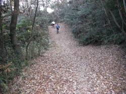 鴨池 遊歩道