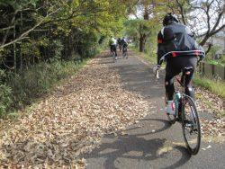 自転車道神出山田 038