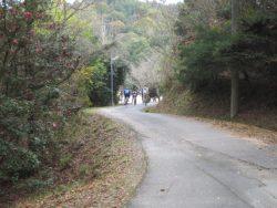 公園藤ノ木自然 089