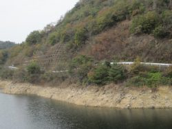 公園藤ノ木自然 074