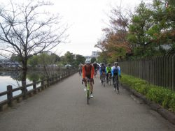 公園藤ノ木自然 011