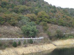 公園藤ノ木自然 073