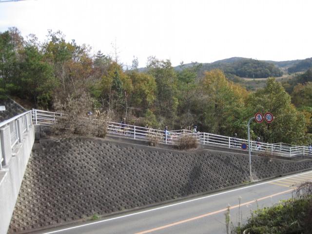 自転車道 加古川 自転車道 : ... 自転 車道 山 の 中 の 自転