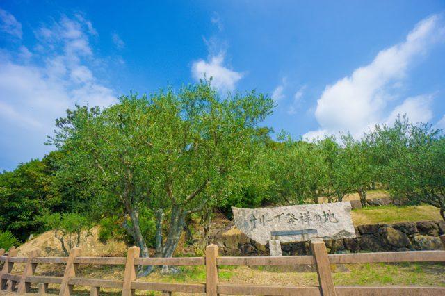 olive park-13